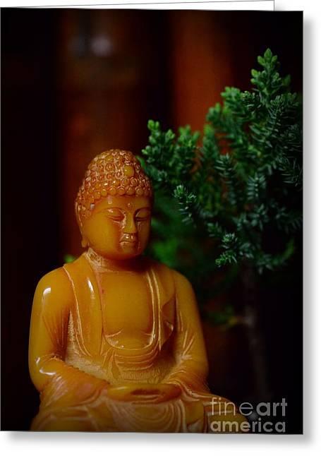 Gautama Greeting Cards - The Buddha Knows Greeting Card by Paul Ward