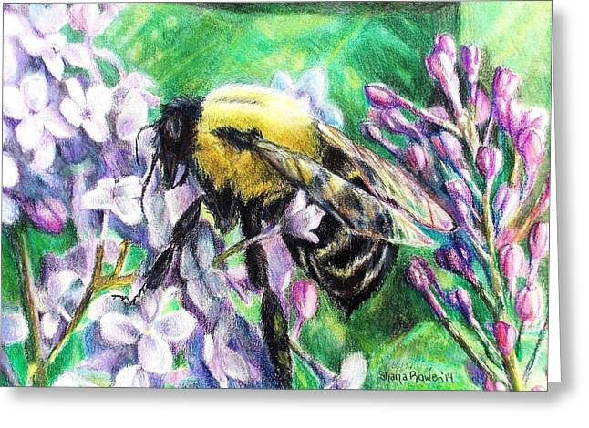 Daylight Drawings Greeting Cards - The Busy Bee and the Lilac Tree Greeting Card by Shana Rowe