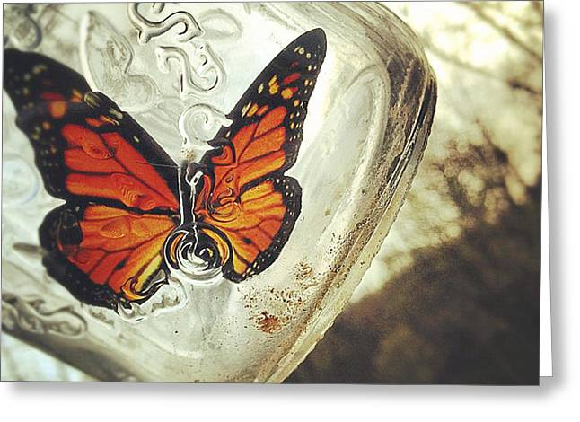 Jars Greeting Cards - The Butterfly Greeting Card by Carrie Ann Grippo-Pike