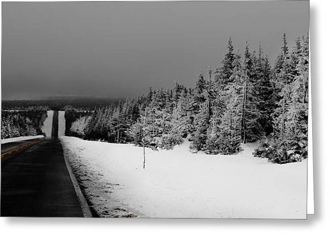 Pine Needles Greeting Cards - The Cabot Trail Greeting Card by Michel Soucy
