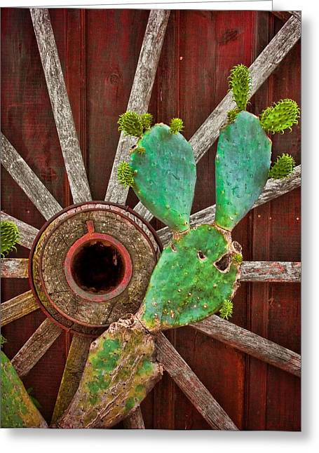 Wagon Wheels Greeting Cards - The Cactus and the Wheel Greeting Card by David and Carol Kelly