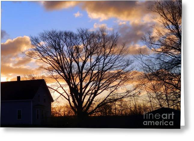 Annapolis Valley Greeting Cards - The Calm After The Storm Greeting Card by Karen Cook
