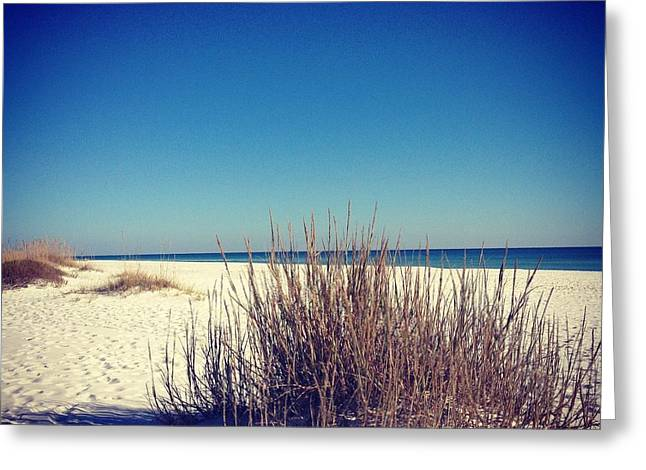 Recently Sold -  - Ocean Shore Greeting Cards - The Calm Greeting Card by Laura Parrish