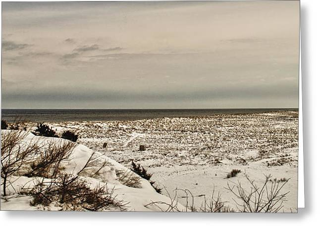 New England Ocean Greeting Cards - The Cape In Winter 1 Greeting Card by Jim Carey