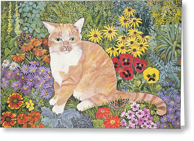 Pansy Greeting Cards - The Carpenters Cat Greeting Card by Hilary Jones