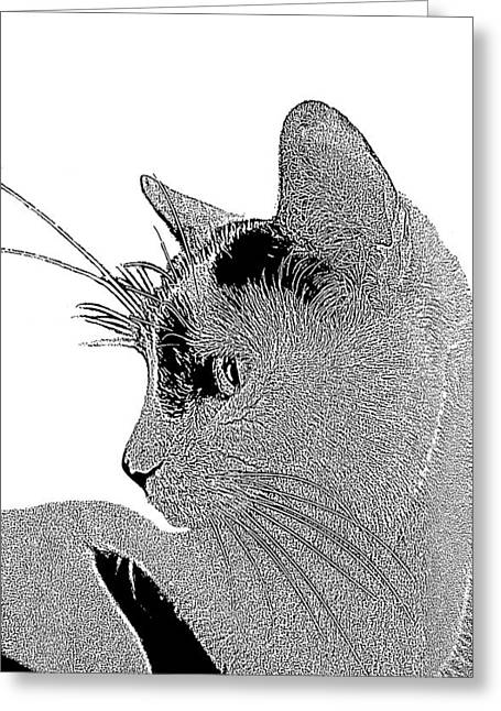 The Cat Greeting Card by Ben and Raisa Gertsberg