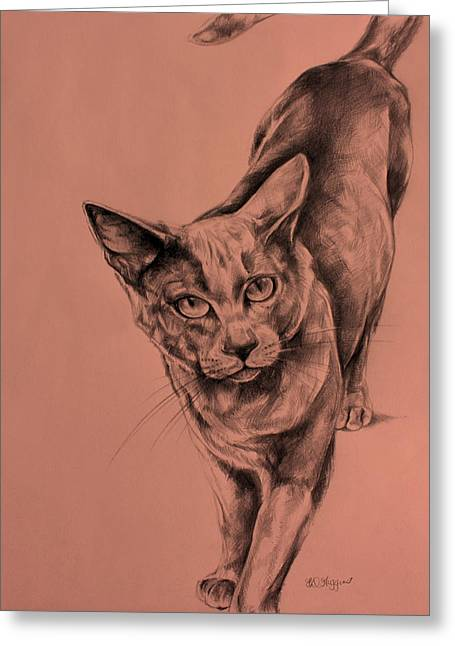 Pussy Drawings Greeting Cards - The Cat  Greeting Card by Derrick Higgins