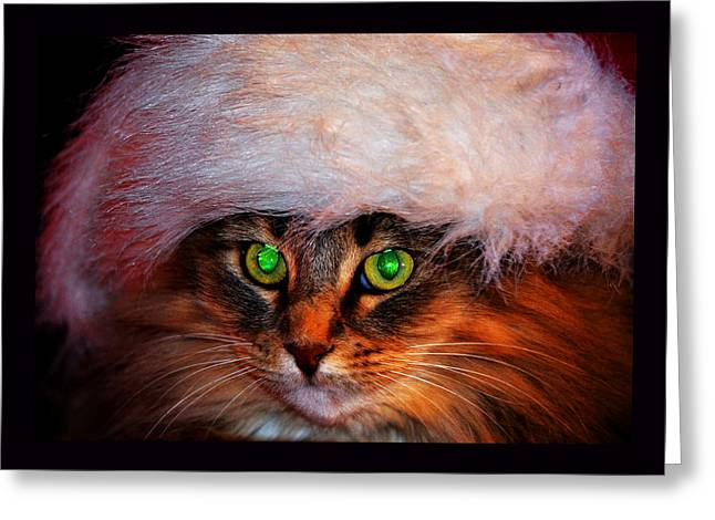 The Hermitage Greeting Cards - The Cat With the Emerald Eyes Greeting Card by Susanne Still