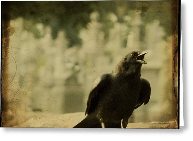 Gothicrow Greeting Cards - The Caw Greeting Card by Gothicolors Donna Snyder