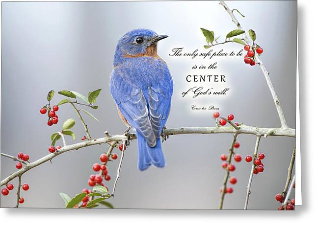 Inspirational Cards Greeting Cards - The Center of Gods Will Greeting Card by Bonnie Barry