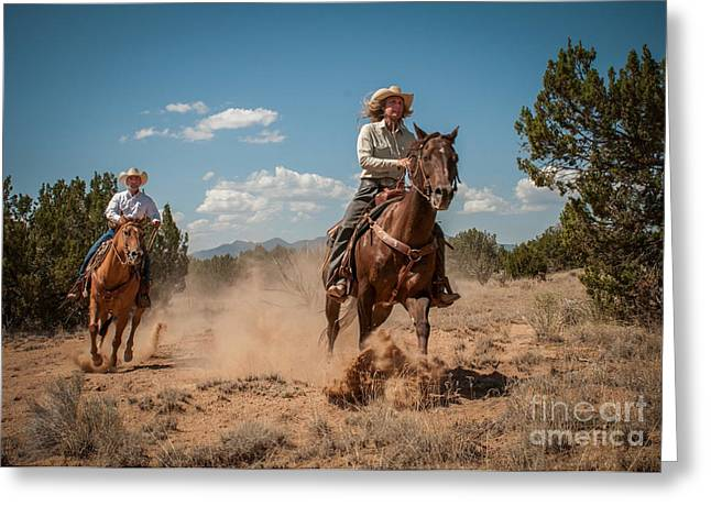 Sherry Davis Greeting Cards - The Chase Greeting Card by Sherry Davis