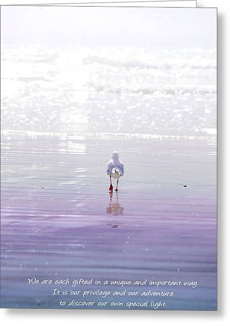 Seagull Reflection Greeting Cards - The Chosen One Greeting Card by Holly Kempe