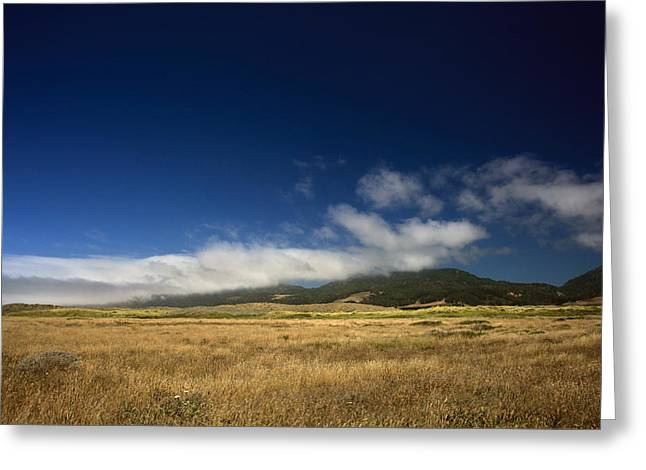 Northern California Parks Greeting Cards - The Clearing Greeting Card by Laurie Search