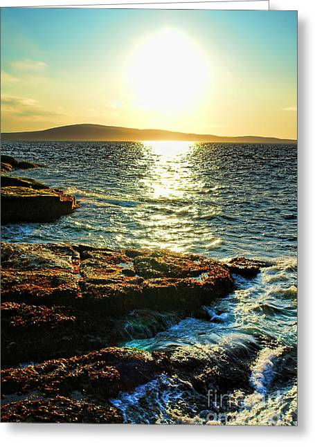 Maine Park Greeting Cards - The Coast of Maine Greeting Card by Olivier Le Queinec