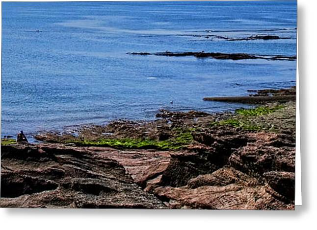 Sunbathing Greeting Cards - The Coast of Vendee Triptych Right Greeting Card by Olivier Le Queinec