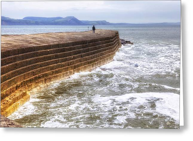 Harbour Wall Greeting Cards - The Cobb - Lyme Regis Greeting Card by Joana Kruse