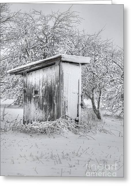 Snow-covered Landscape Photographs Greeting Cards - The Coldest Fifty Yard Dash Greeting Card by Benanne Stiens