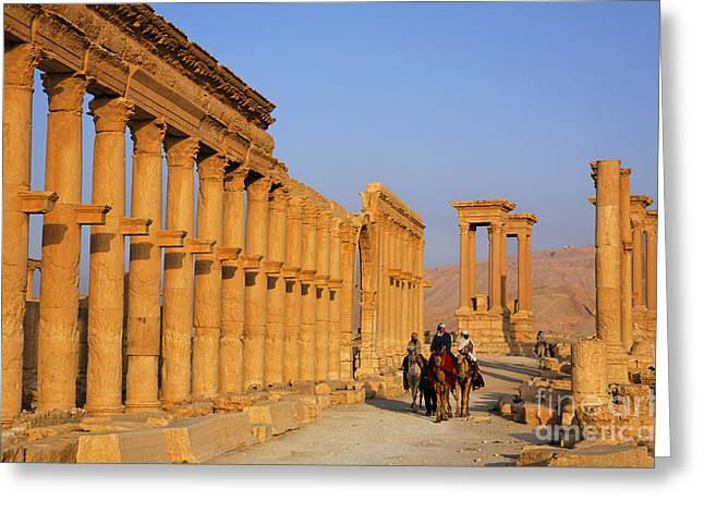 The Colonnaded Street Palmyra Syria Greeting Card by Robert Preston