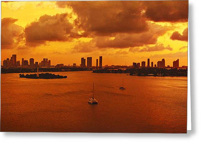 4th July Photographs Greeting Cards - The color of passion Greeting Card by Michael Guirguis