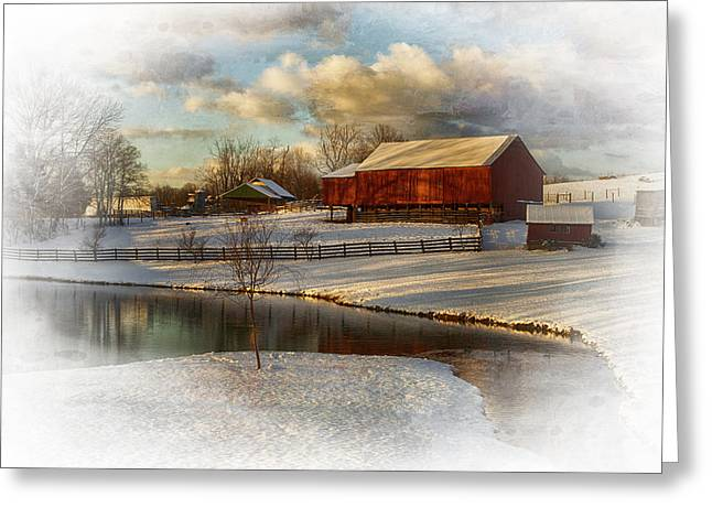 The Color Of Winter Greeting Card by Kathy Jennings