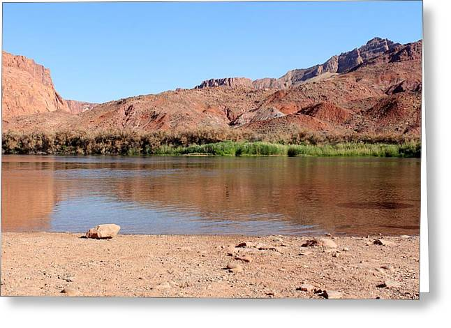 Canyon Ferry Lake Greeting Cards - The Colorado through Marble Canyon Greeting Card by Elizabeth Sullivan