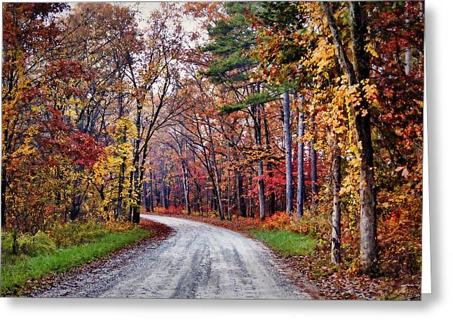Gravel Road Greeting Cards - The Colors of Fall Greeting Card by Cricket Hackmann