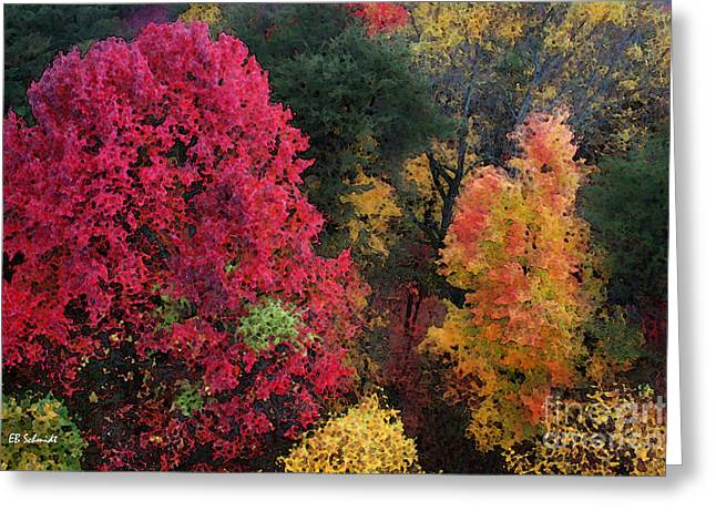 The Colors Of Fall Greeting Card by E B Schmidt
