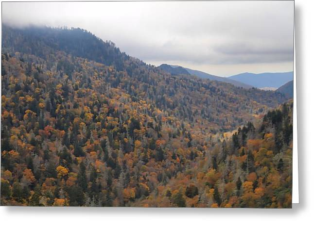 Gatlinburg Tennessee Greeting Cards - The Colors Of The Smokies Greeting Card by Dan Sproul