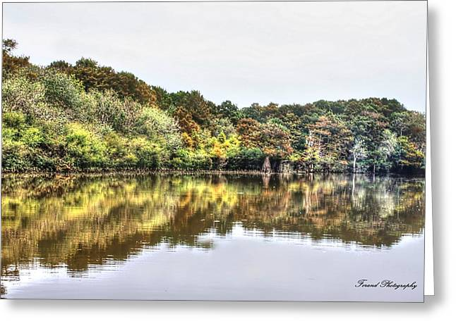 Reflections Of Trees In River Greeting Cards - The Coming of Winter Greeting Card by Debra Forand