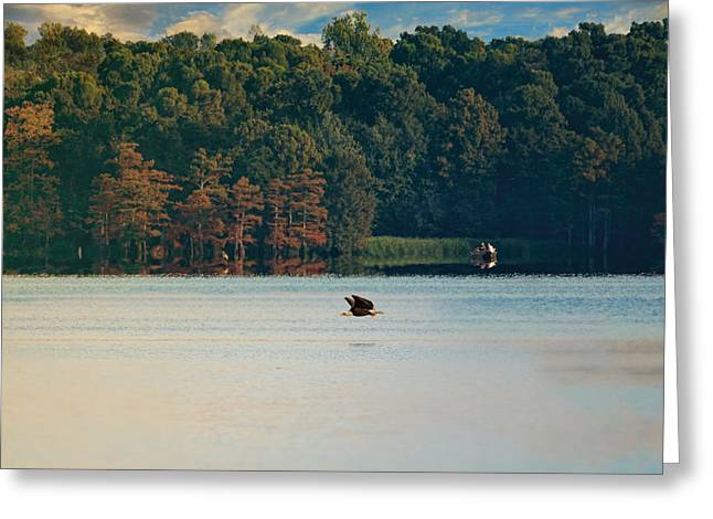 Reelfoot Lake Greeting Cards - The Competition Greeting Card by Jai Johnson