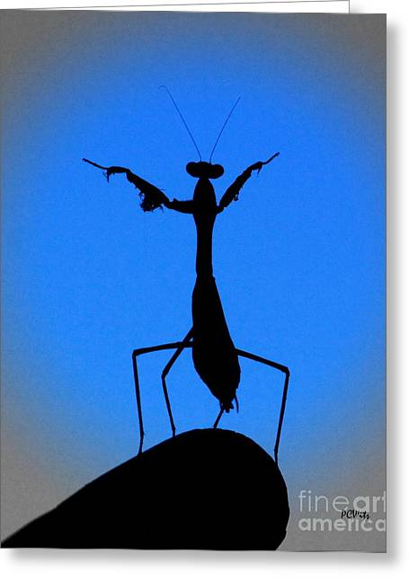 The Conductor Greeting Card by Patrick Witz