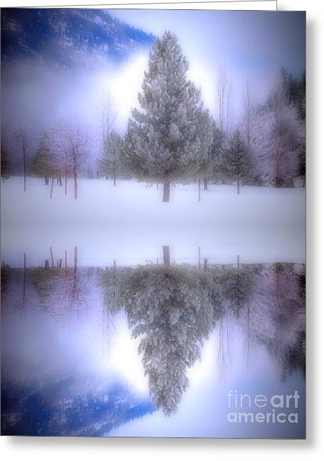 Coldness Greeting Cards - The Confidence of Trees Greeting Card by Tara Turner