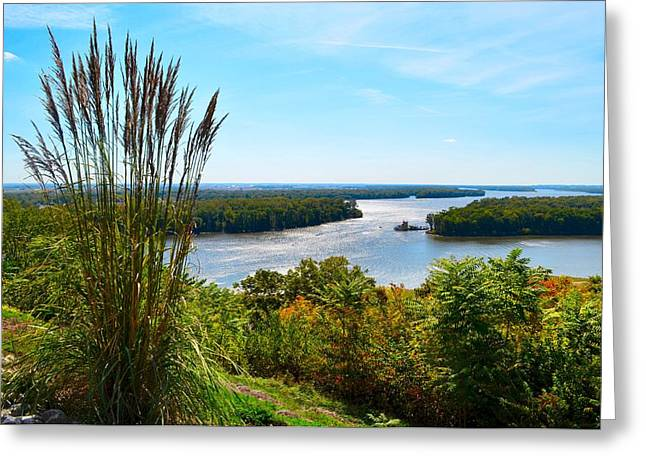 Mississippi River Scene Greeting Cards - The Confluence  Greeting Card by Julie Dant