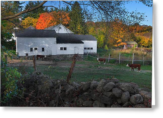 The Connecticut Outback Greeting Card by Bill  Wakeley