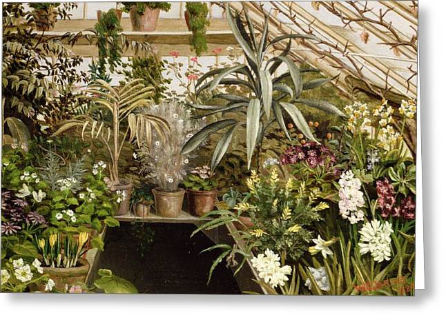 The Conservatory Greeting Card by WC Jarvis
