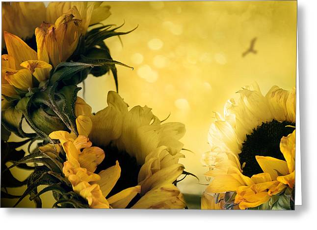 Yellow Sunflower Pyrography Greeting Cards - The Constant Flower Greeting Card by Istvan  Kadar