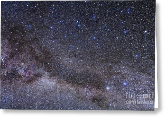 Twinkle Greeting Cards - The Constellation Of Centaurus Greeting Card by Alan Dyer