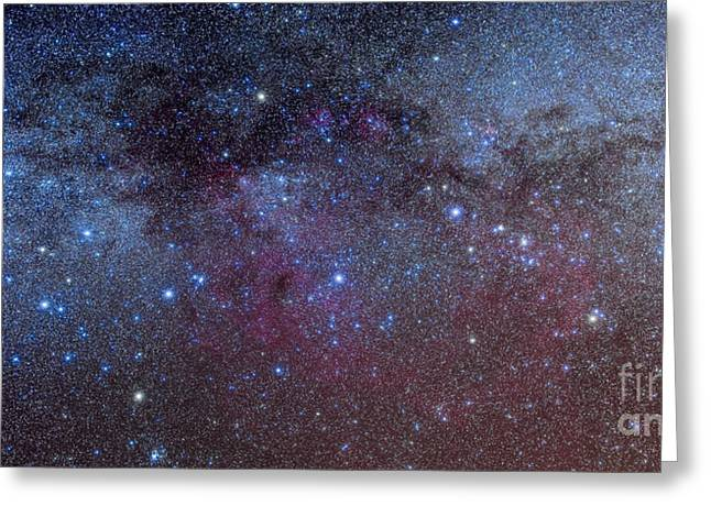 Double Cluster Greeting Cards - The Constellations Of Puppis And Vela Greeting Card by Alan Dyer