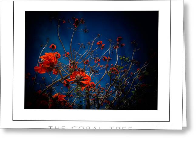 Mike Nellums Greeting Cards - The Coral Tree poster Greeting Card by Mike Nellums