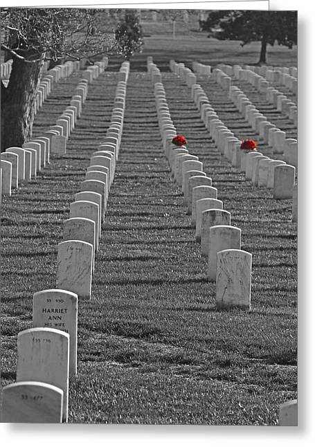 Bravery Greeting Cards - The Cost of Freedom Greeting Card by Tom Gari Gallery-Three-Photography
