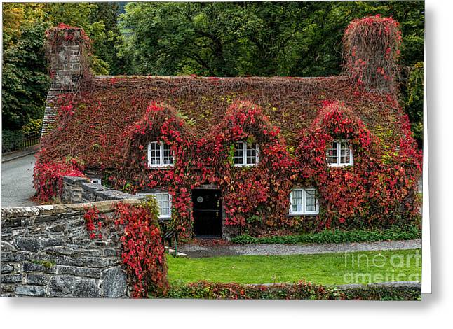 15th Greeting Cards - The Cottage Greeting Card by Adrian Evans