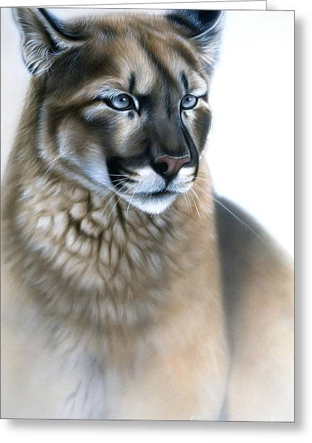 Cougar Greeting Cards - The Cougar Greeting Card by Sandi Baker