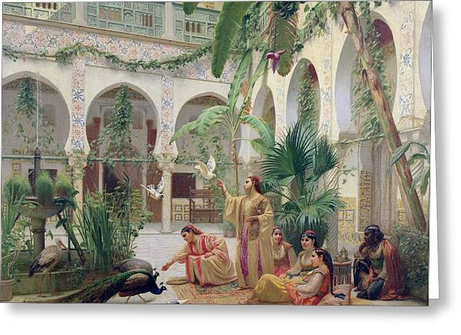 Seraglio Paintings Greeting Cards - The Court Of The Harem Greeting Card by Albert Girard