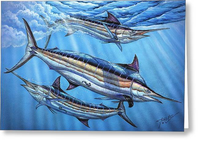 Marlin Azul Greeting Cards - The Courtship Greeting Card by Terry Fox