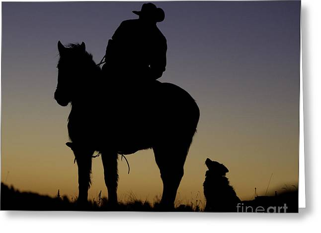 Quarter Horses Greeting Cards - The Cowboy and His Dog Greeting Card by Carol Walker