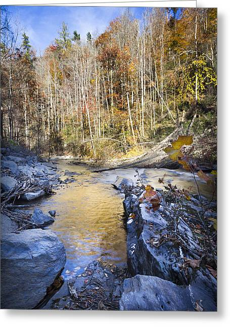 Tree Reflection At Sunset Greeting Cards - The Creek Greeting Card by Debra and Dave Vanderlaan