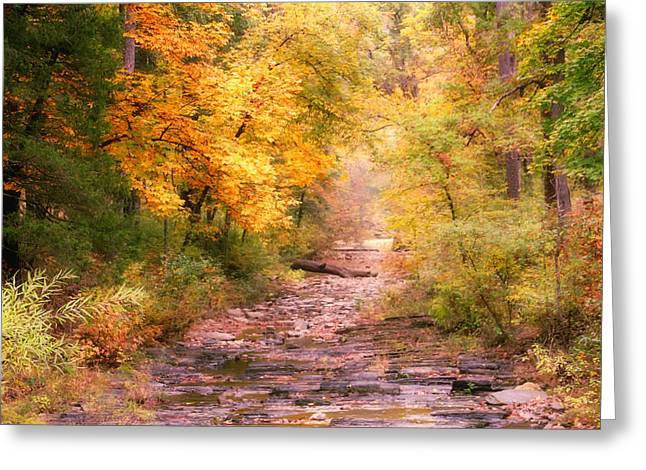 Creekbed Greeting Cards - The Creekbed Greeting Card by Carolyn Fletcher