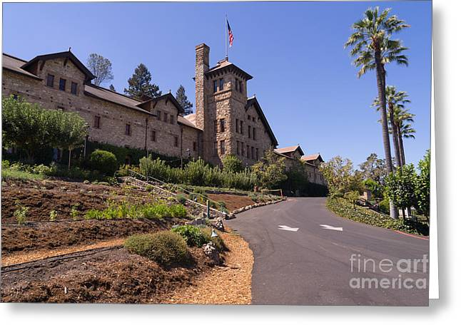 St Helena Greeting Cards - The Culinary Institute of America Greystone St Helena Napa California DSC1694 Greeting Card by Wingsdomain Art and Photography
