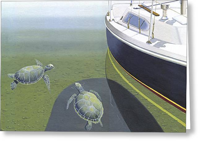 British Columbia Greeting Cards - The Curiosity Of Sea Turtles Greeting Card by Gary Giacomelli
