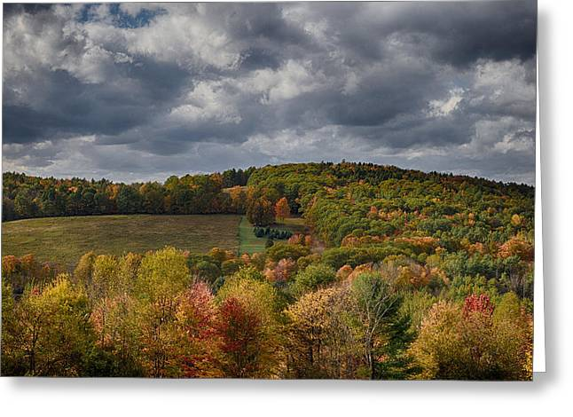 New Hampshire Leaves Greeting Cards - The Cutting Greeting Card by Nathan Larson